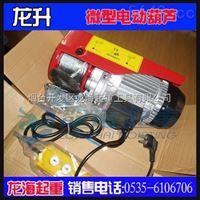 PA125-250微型電動葫蘆,可定制起升高度,廠家